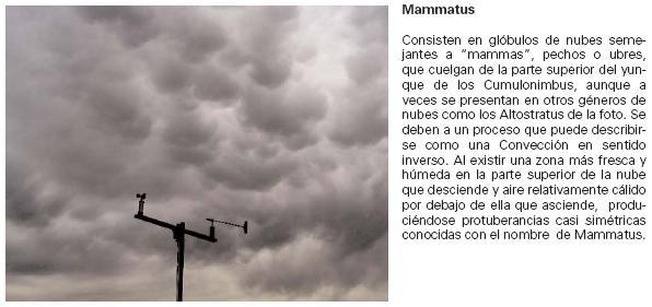 Nubes noctilucentes FICHASMAMMATUS